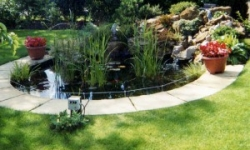 Planting and Water Features Ponds