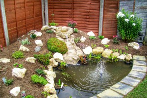 Landscape Gardeners Lincolnshire -Ponds and Planting